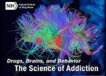 Drugs Brains
