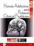 Herhoin Addiction