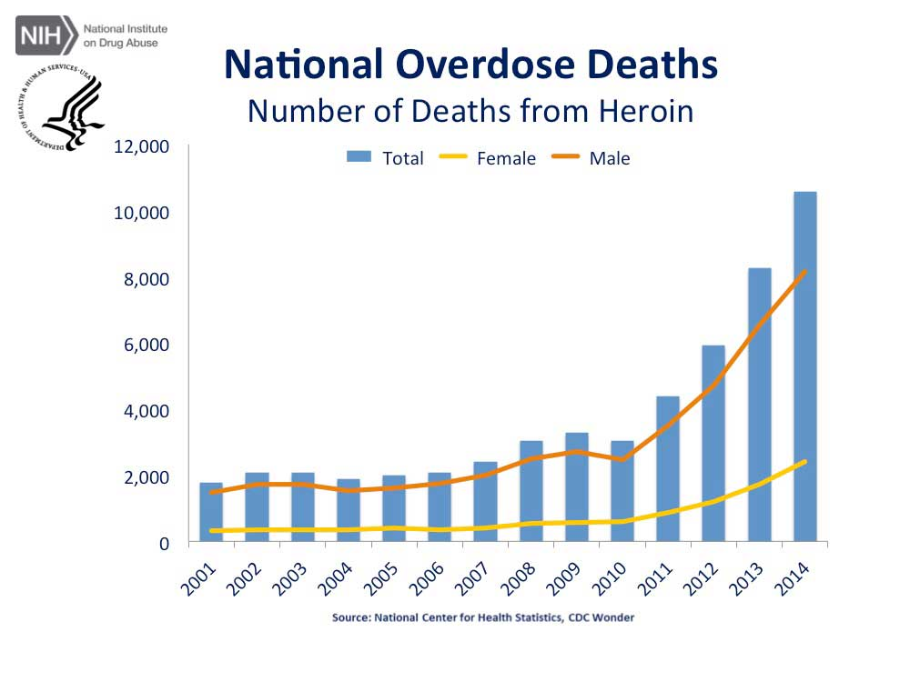 overdose death rates chart 1